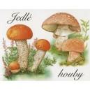 VZS26 - Jedlé houby
